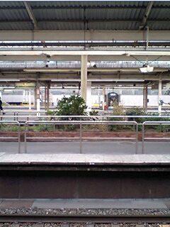 東京散歩ちゅう。